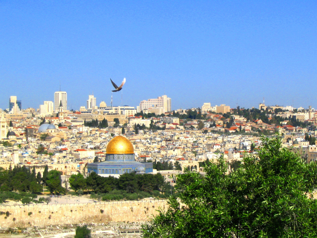 jerusalem-dome-of-the-rock-bird-nc-img_0206